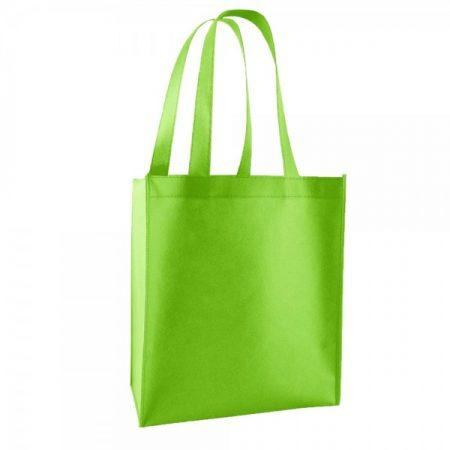 תיק אלבד לכנס ירוק